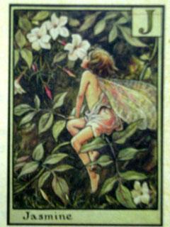 「シシリー・メアリー・バーカー クイーンロゴ」の画像検索結果